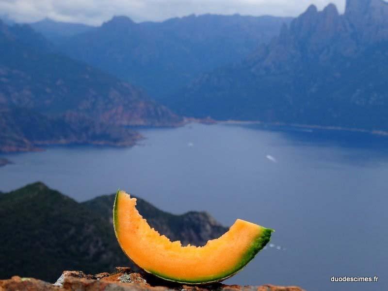 melon au porto-001