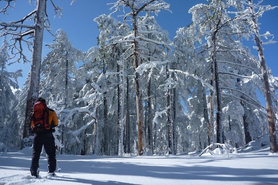 neige bavella 900